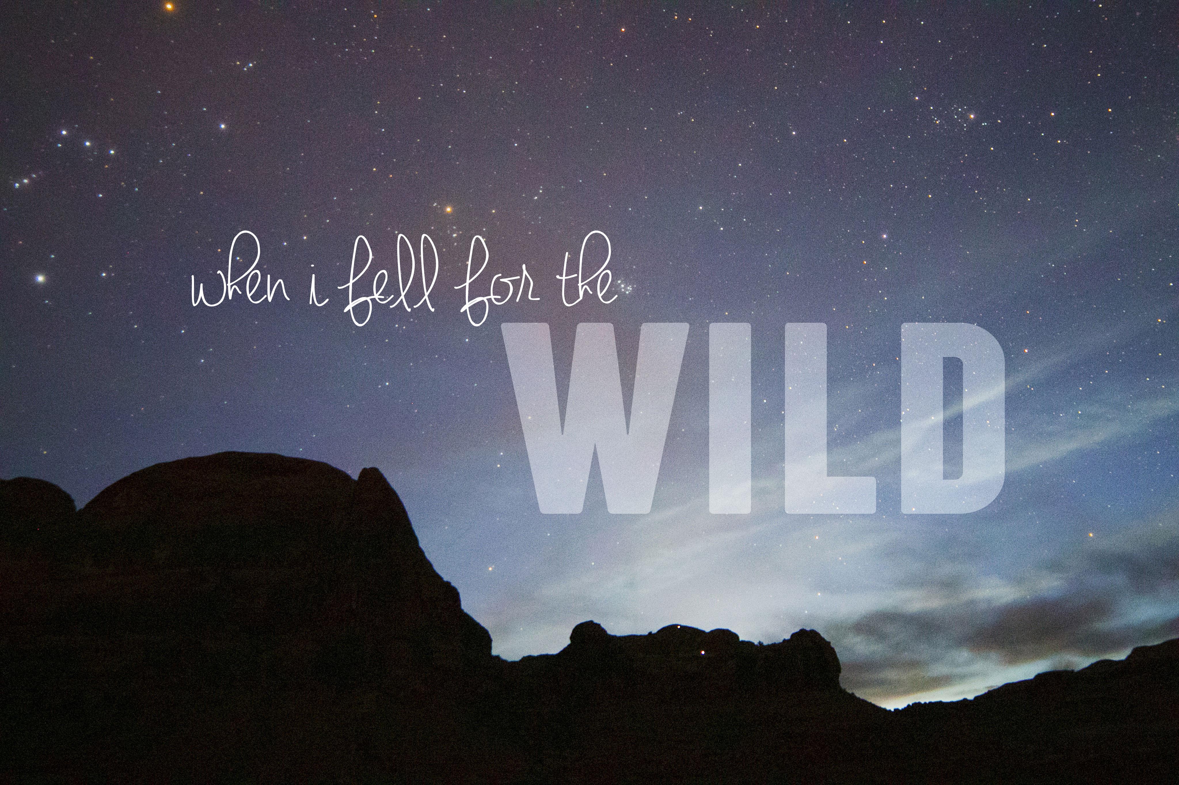 wild-title